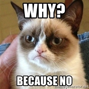 Grumpy Cat  - why? because no
