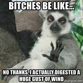 no thanks - Bitches be like... no thanks, I actually digested a huge gust of wind