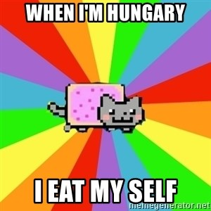 nyan nyan nyan cat - WHEN I'M HUNGARY I EAT MY SELF