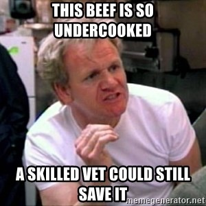 Gordon Ramsay - This Beef Is so undercooked a skilled vet could still save it