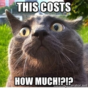 Confused Cat - this costs how much!?!?