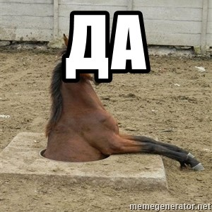 Hole Horse - ДА