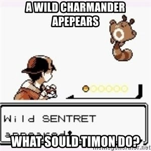 a wild pokemon appeared - A wild charmander apepears  What sould Timon do?