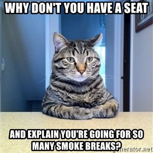 Chris Hansen Cat - WHY DON'T YOU HAVE A SEAT AND EXPLAIN YOU'RE GOING FOR SO MANY SMOKE BREAKS?