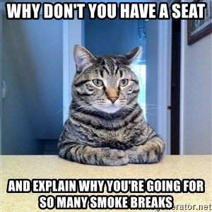 Chris Hansen Cat - Why don't you have a seat and explain why you're going for so many smoke breaks