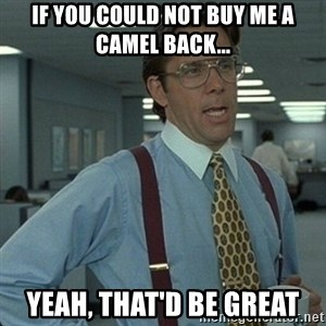 Yeah that'd be great... - IF you could not buy me a camel back... Yeah, that'd be great