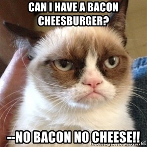 Mr angry cat - Can i have a bacon cheesburger?  --no bacon no cheese!!