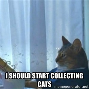i should buy a boat meme -  I should start collecting cats