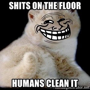Trollcat - Shits on the floor humans clean it