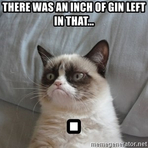 moody cat - There was an inch of gin left in that...  .