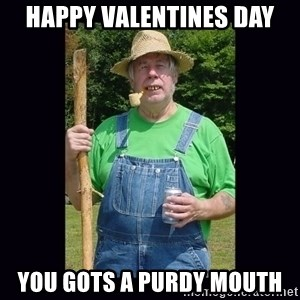 Curious Hillbilly - happy valentines day you gots a purdy mouth