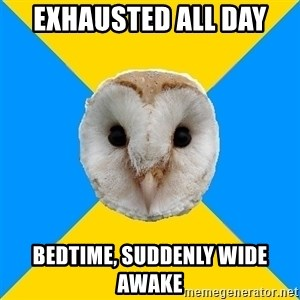 Bipolar Owl - Exhausted All Day Bedtime, Suddenly wide awake