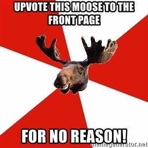 Stereotypical Canadian Moose - upvote this moose to the front page for no reason!