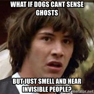 Conspiracy Keanu - What if dogs cant sense ghosts but just smell and hear invisible people?