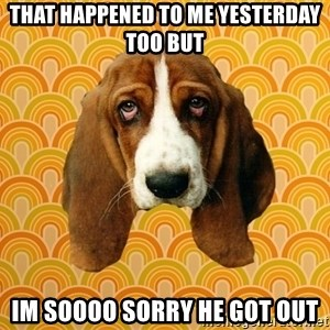 SAD DOG - that happened to me yesterday too but im soooo sorry he got out