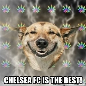 Stoner Dog -  Chelsea Fc is the best!