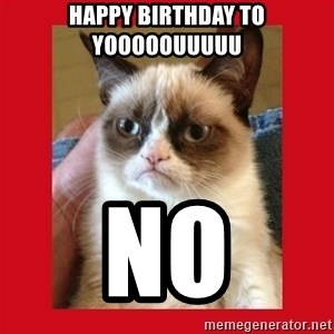 No cat - Happy bIrthday to yooooouuuuu No