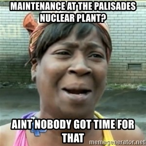 Ain't Nobody got time fo that - Maintenance at the Palisades Nuclear plant? Aint nobody got time for that