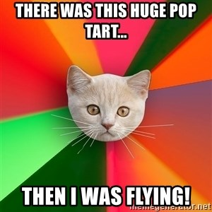 Advice Cat - THERE WAS THIS HUGE POP TART... THEN I WAS FLYING!
