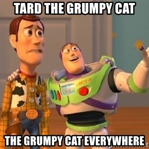 Consequences Toy Story - tard the grumpy cat the grumpy cat everywhere