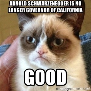 Grumpy Cat  - arnold schwarzenegger is no longer governor of california good