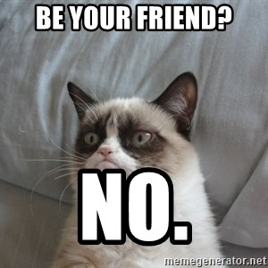 moody cat - Be your friend? No.