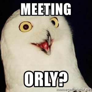 Orly Owl - meeting  orly?