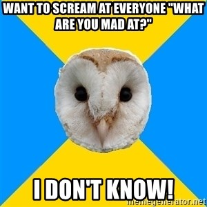 "Bipolar Owl - want to scream at everyone ""What are you mad at?"" i don't know!"
