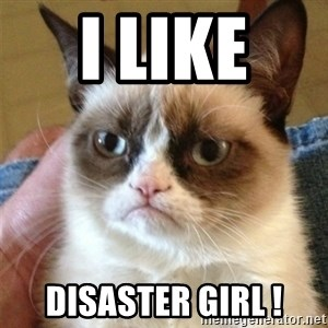 Grumpy Cat  - I like  Disaster Girl !