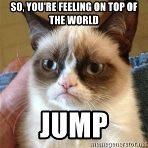 Grumpy Cat  - so, you're feeling on top of the world jump