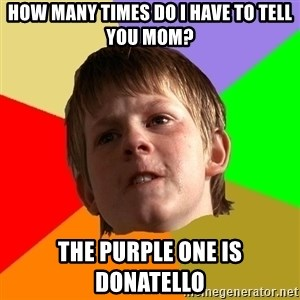 Angry School Boy - how many times do i have to tell you mom? the purple one is donatello