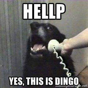 hello? yes this is dog - Hellp Yes, this is dingo