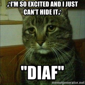 "Depressed cat 2 - ♪I'm so excited and i just can't hide it♪ ""diaf"""