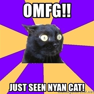 Anxiety Cat - OMFG!! Just seen nyan cat!