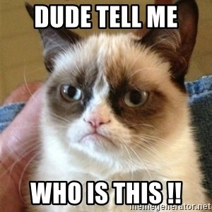 Grumpy Cat  - DUDE TELL ME  WHO IS THIS !!