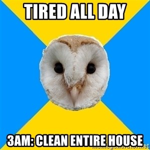 Bipolar Owl - TIred all day 3am: CLean entire house