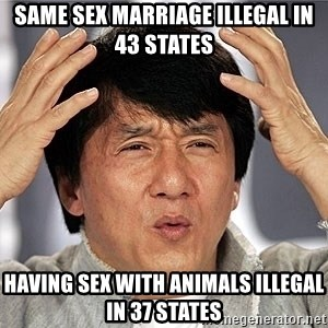 Jackie Chan - same sex marriage illegal in 43 states having sex with animals illegal in 37 states