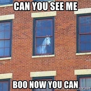 window horse - CAN YOU SEE ME BOO NOW YOU CAN
