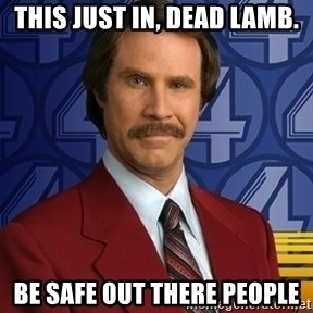 Stay classy - THIS JUST IN, DEAD LAMB. BE SAFE OUT THERE PEOPLE