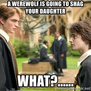 Harry Potter  - a werewolf is going to shag your daughter what?......