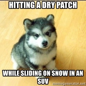 Baby Courage Wolf - HITTING A DRY PATCH WHILE SLIDING ON SNOW IN AN SUV