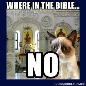 Grumpy Orthodox Cat - Where in the bible... no