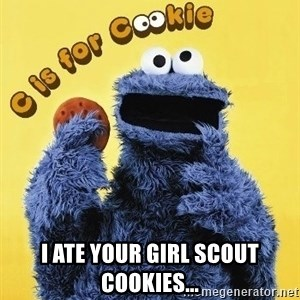 cookie monster  -  I ate your girl scout cookies...