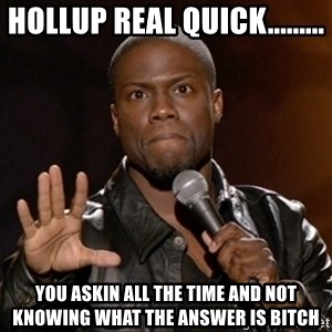 Kevin Hart - hollup real quick......... you askin all the time and not knowing what the answer is bitch