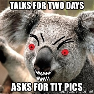 Abortion Koala - talks for two days asks for tit pics