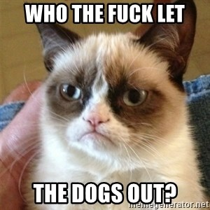 Grumpy Cat  - who the fuck let  the dogs out?