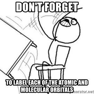 Flip table meme - Don't FORGET TO LABEL EACH OF THE ATOMIC AND MOLECULAR ORBITALS