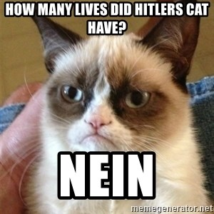Grumpy Cat  - How many lives did hitlers caT HAVE? nEIN