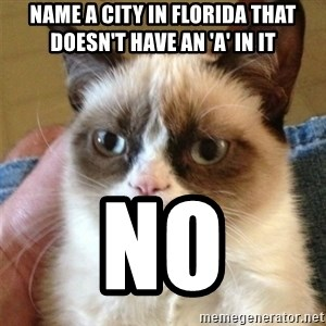 Grumpy Cat  - NAME A CITY IN FLORIDA THAT DOESN'T HAVE AN 'A' IN IT NO