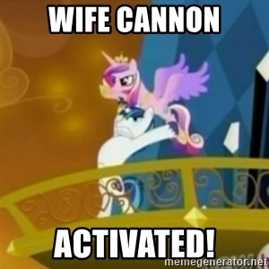 Shining Armor throwing Cadence - Wife Cannon activated!
